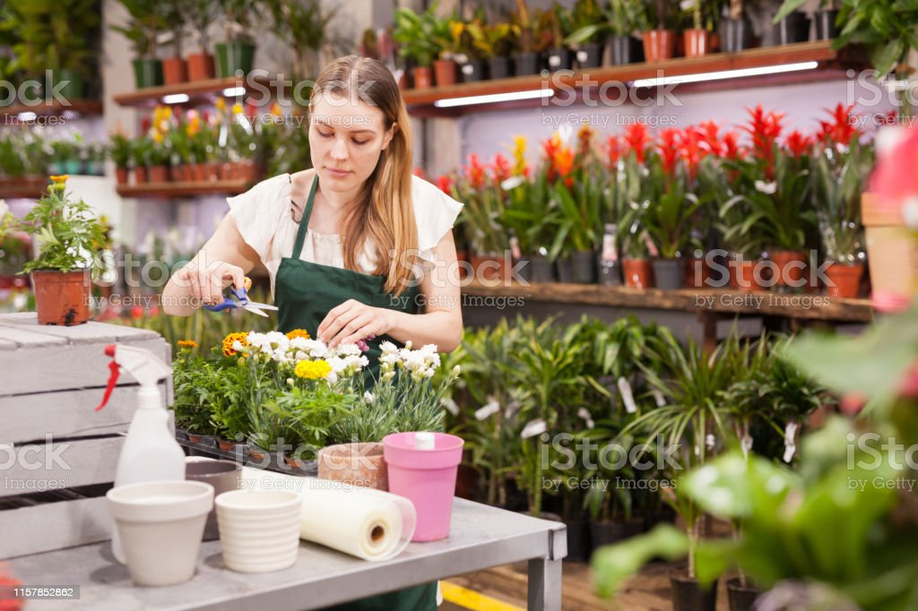 Florist in an apron caring for flowers in a flower shop