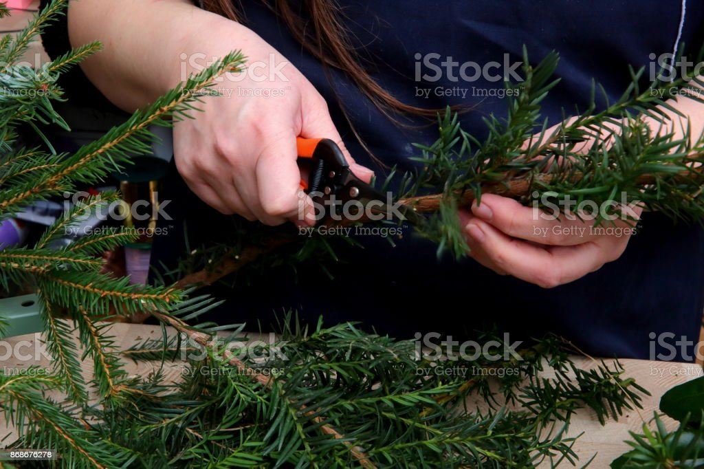 Florist performs decoration with green thuja twigs. stock photo