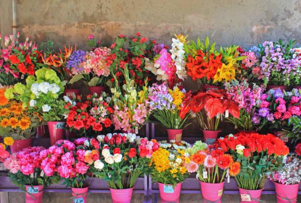 fleuriste boutique affichage, venise, italie - fleuriste photos et images de collection