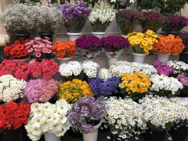 Florist shop picture id1139754959?b=1&k=6&m=1139754959&s=612x612&w=0&h=chyygmpiomq5xzb5qc0ydxzdzieeppftyqfj5 herdy=