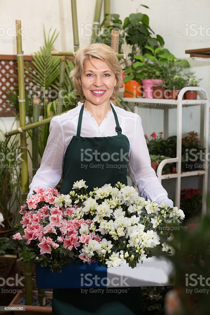 Florist with fresh flowers foto royalty-free