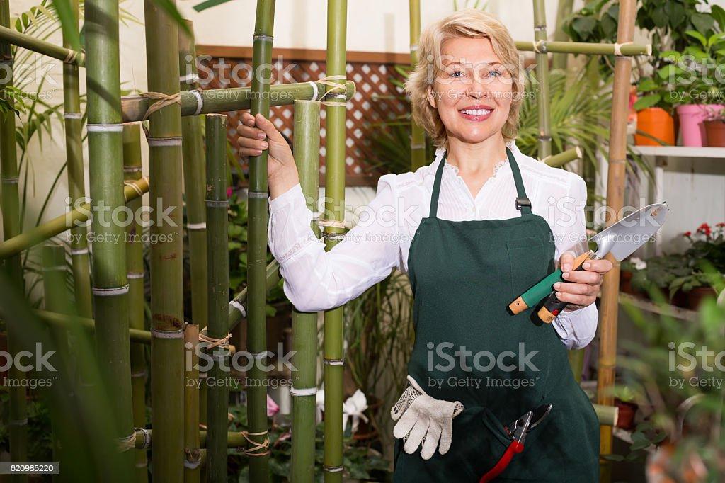 Florista em floricultura com ferramentas foto royalty-free