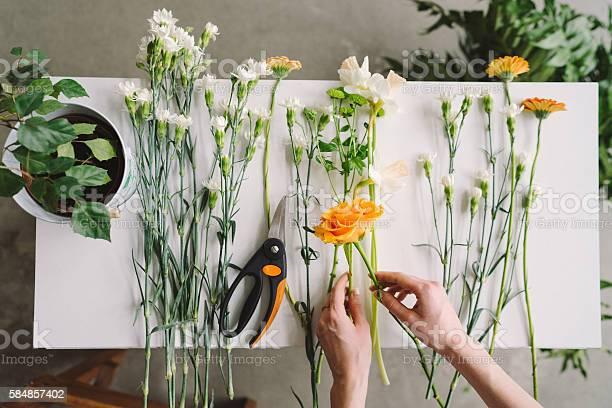 Florist workspace caucasian woman making floral decorations picture id584857402?b=1&k=6&m=584857402&s=612x612&h=lwepb26xzy1plvxbangky10q jzvs4piqrzq zq7jmy=