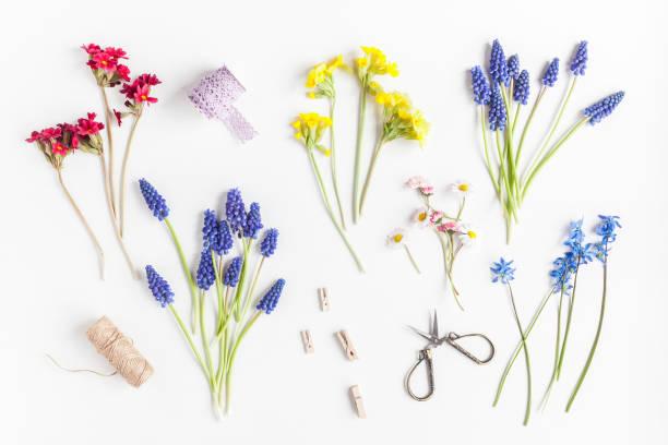 꽃집 작업 영역입니다. 꽃 및 액세서리입니다. 평면 위치, 최고 보기 - 히아신스 뉴스 사진 이미지