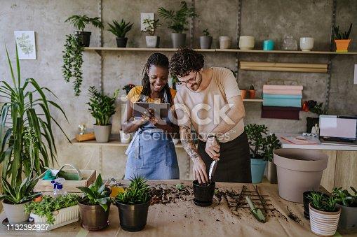 Florists Using Digital Tablet in Store