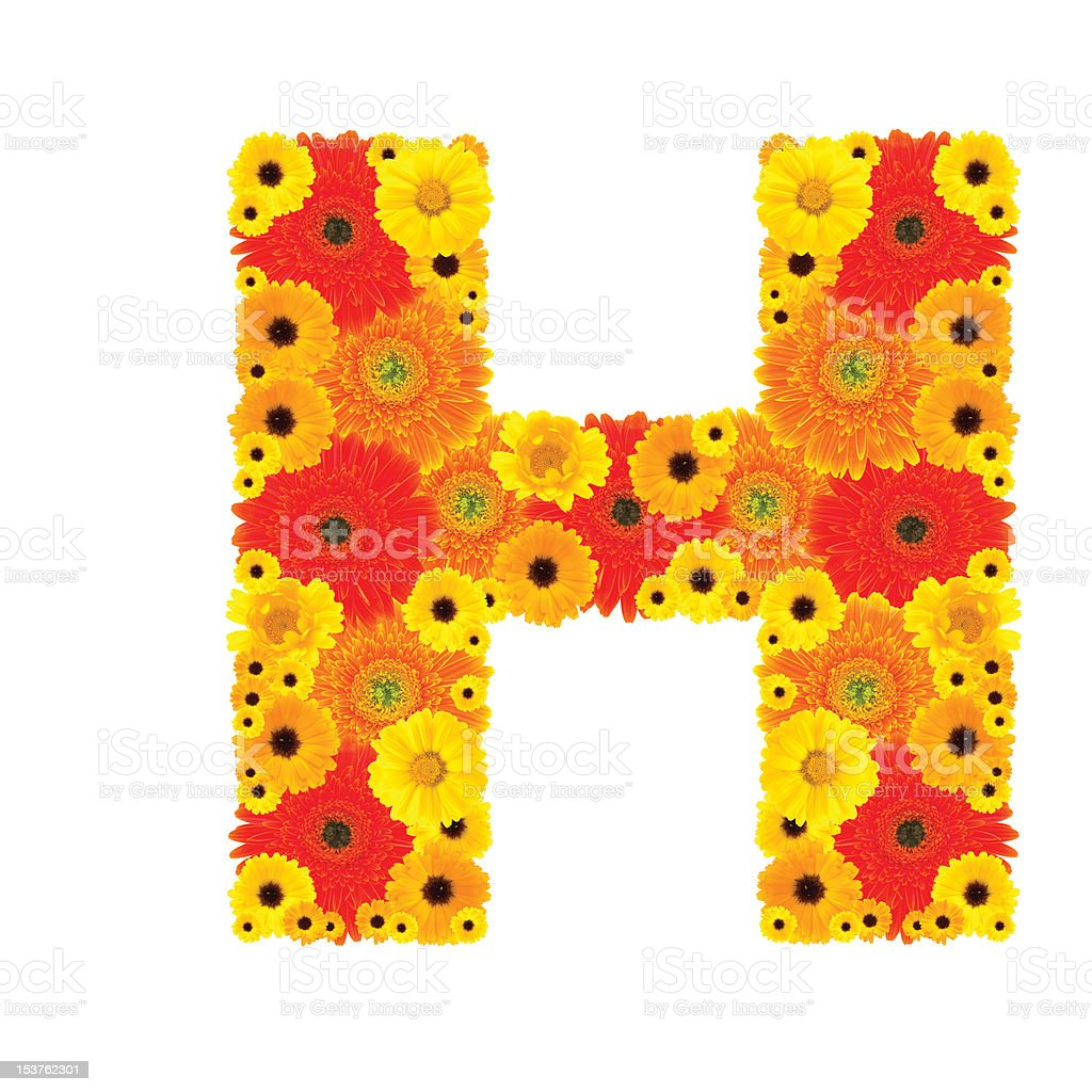 Flower Alphabet - H royalty-free stock photo