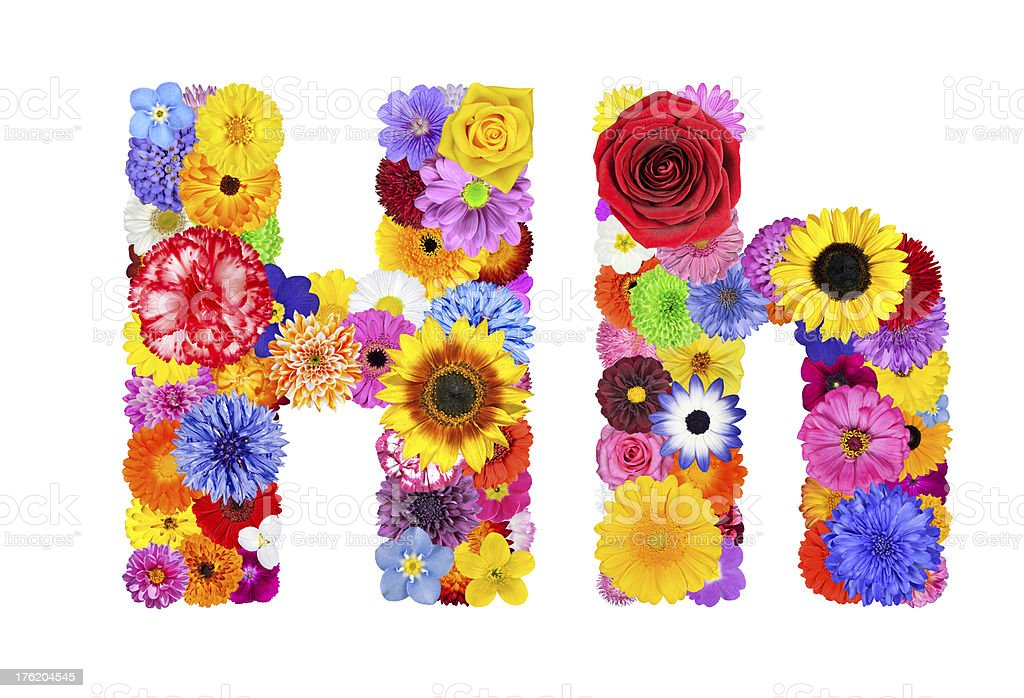Flower Alphabet Isolated on White - Letter H royalty-free stock photo