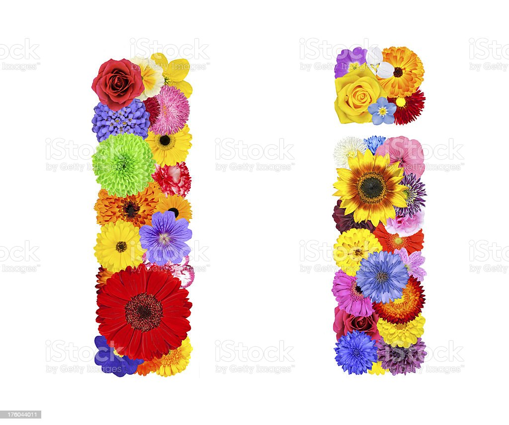 Flower Alphabet Isolated on White - Letter I royalty-free stock photo