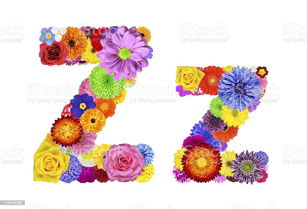 Flower Alphabet Isolated on White - Letter Z royalty-free stock photo