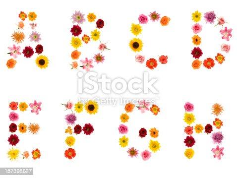 istock XXL Flower Alphabet 157398627