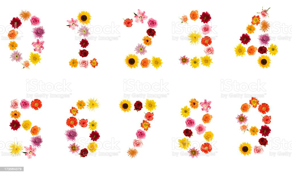 XXL Flower Alphabet stock photo