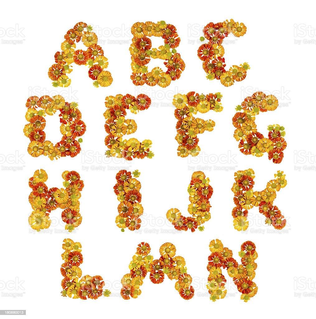 Flower alphabet royalty-free stock photo