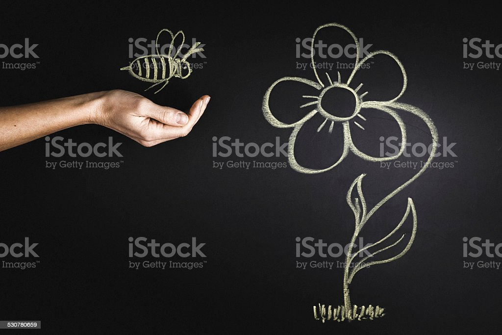Abeille et fleur sur le tableau - Photo