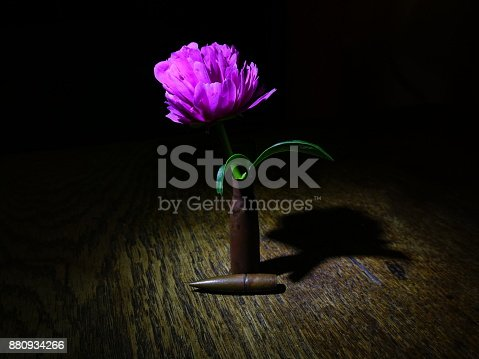 istock Flower and Bullet 880934266