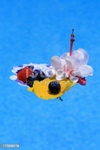 502634476 istock photo Flower and fruit composition on water 172938218