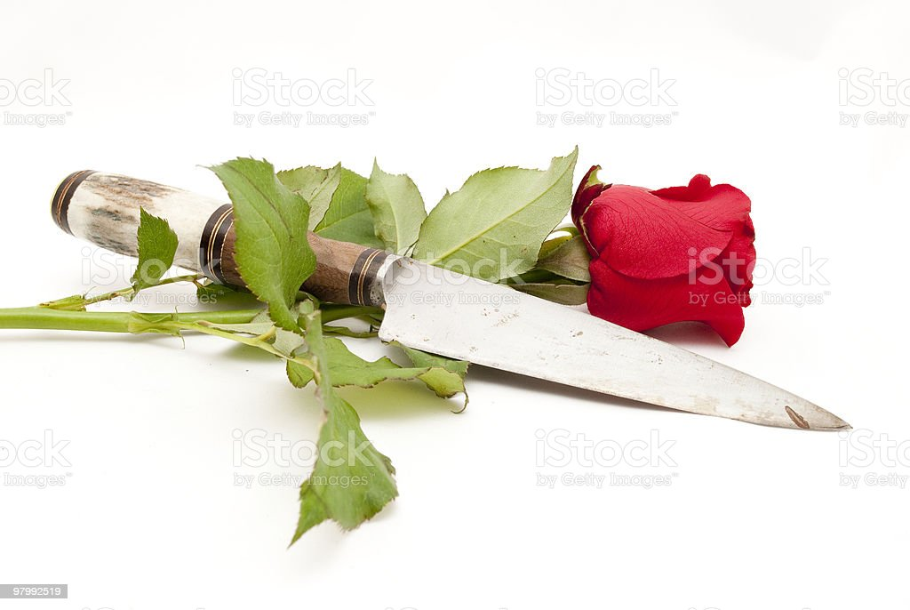 Flower and knife royalty free stockfoto