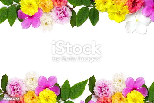 istock flower and leaf frame isolated on a white background 538883768