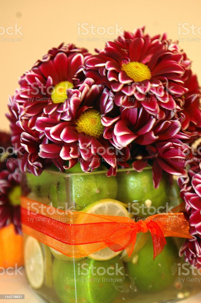 flower and lime arrangement royalty-free stock photo