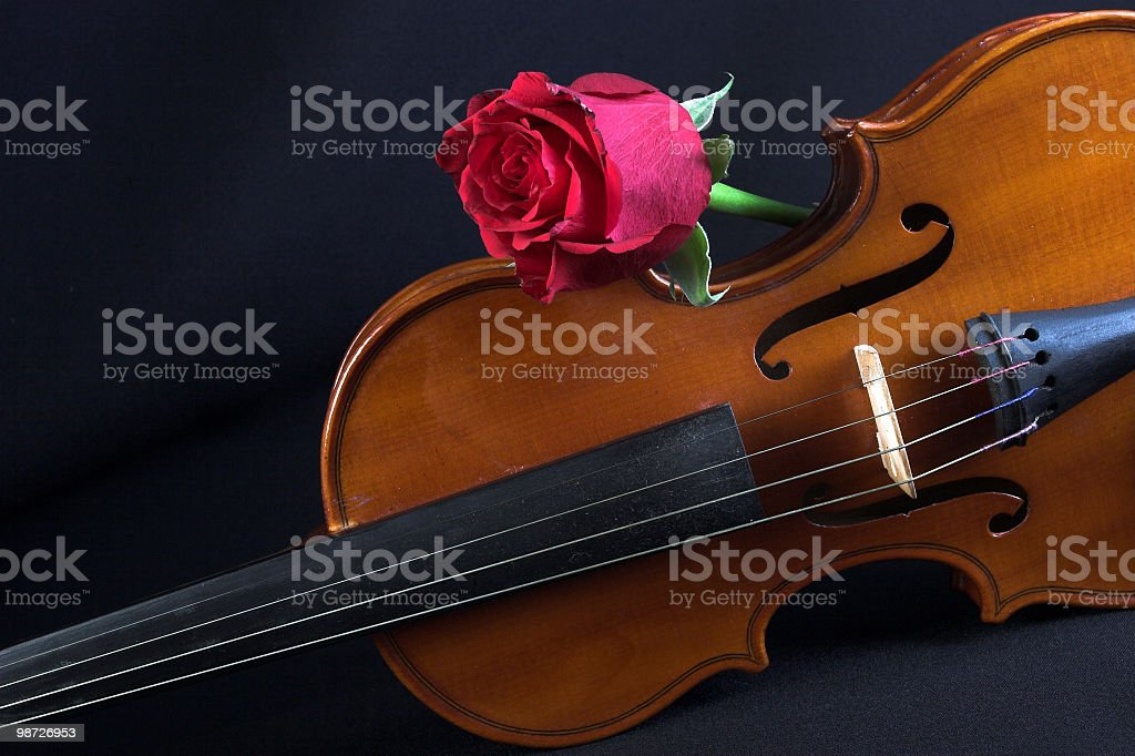 Flower and music royalty-free stock photo
