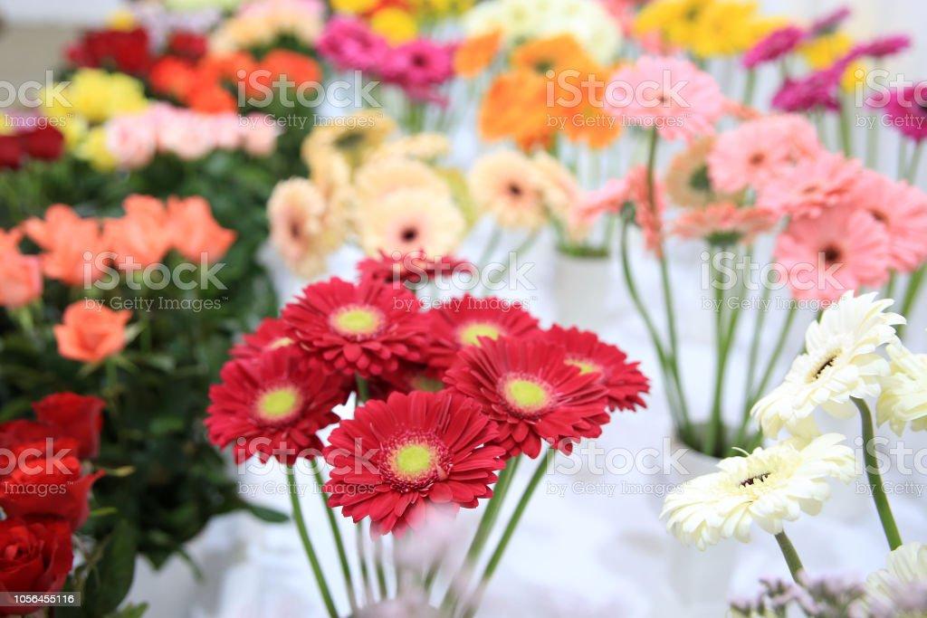 Flor e morango - foto de acervo