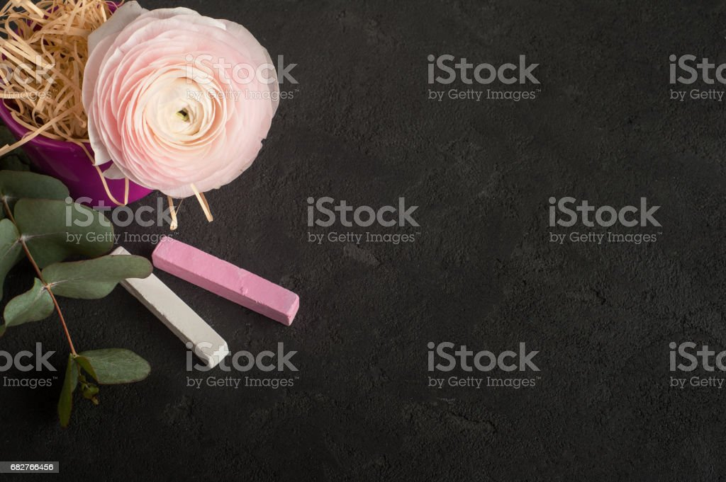 Flower arangement of ranunculus and chalk stock photo