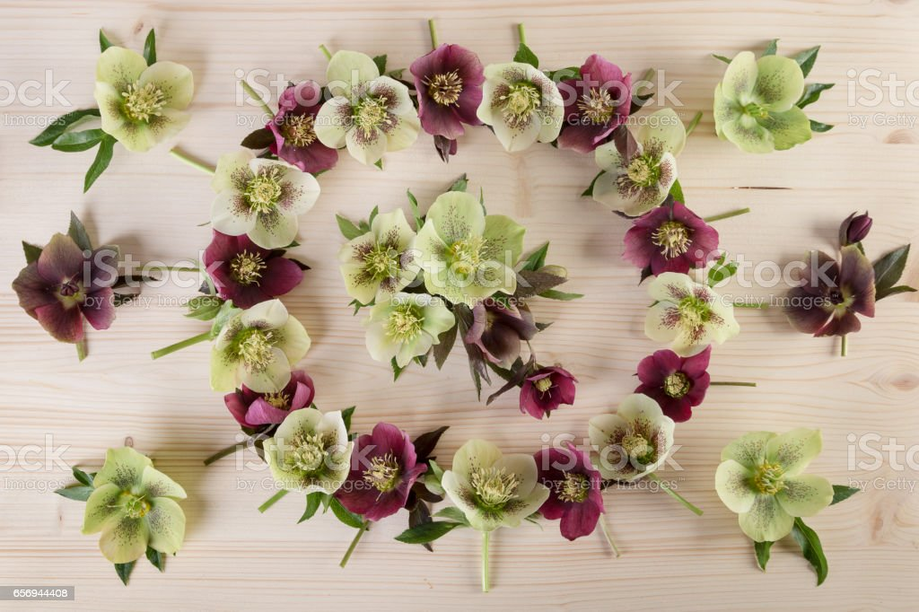 Flower arrangement pastel color on light wooden background. Top view, flat lay stock photo