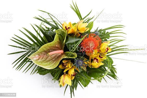 Flower arrangement picture id172280536?b=1&k=6&m=172280536&s=612x612&h=gtadz6w64vdrgh2j2eiaojr1fof 1cwiukvtxbrtvka=