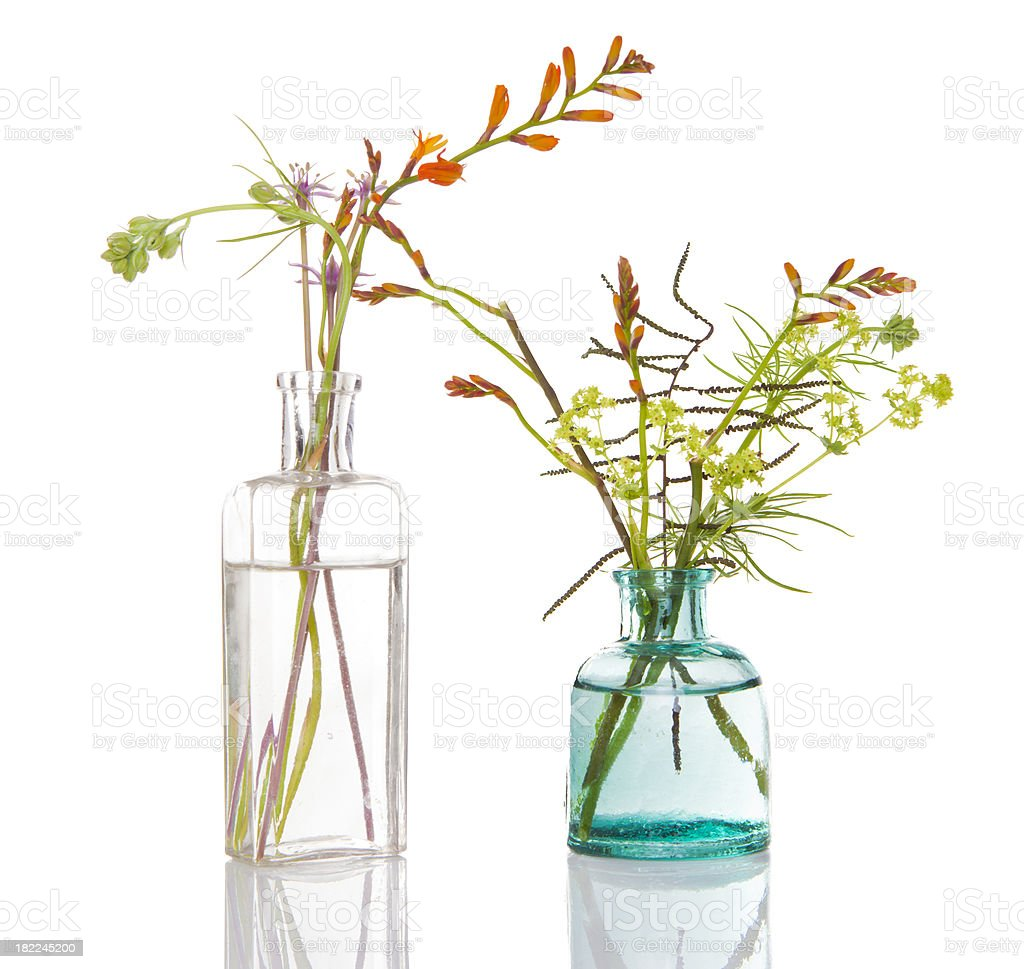 Flower Arrangements royalty-free stock photo