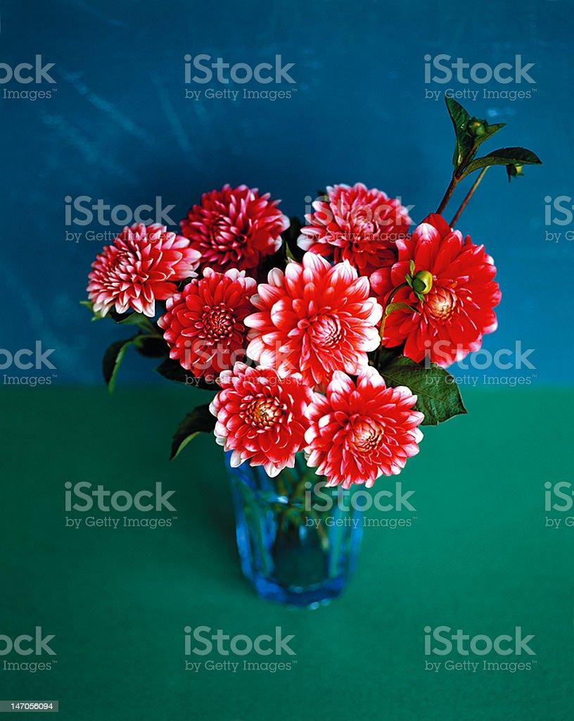 flower arrangment stock photo