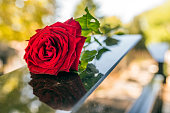 Gravestone with withered sad red rose during summer day/ Tombstone on graveyard / Sorrow about loss of beloved ones