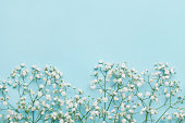 Flower background for holidays. Flat lay style. Copy space. Vintage.