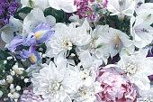 istock flower background 1247756082