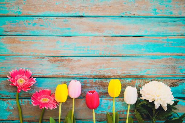 blomma bakgrund - maj bildbanksfoton och bilder