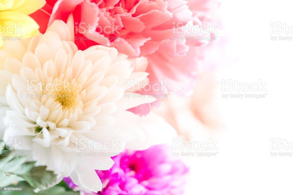 Flower background with sample space. photo libre de droits