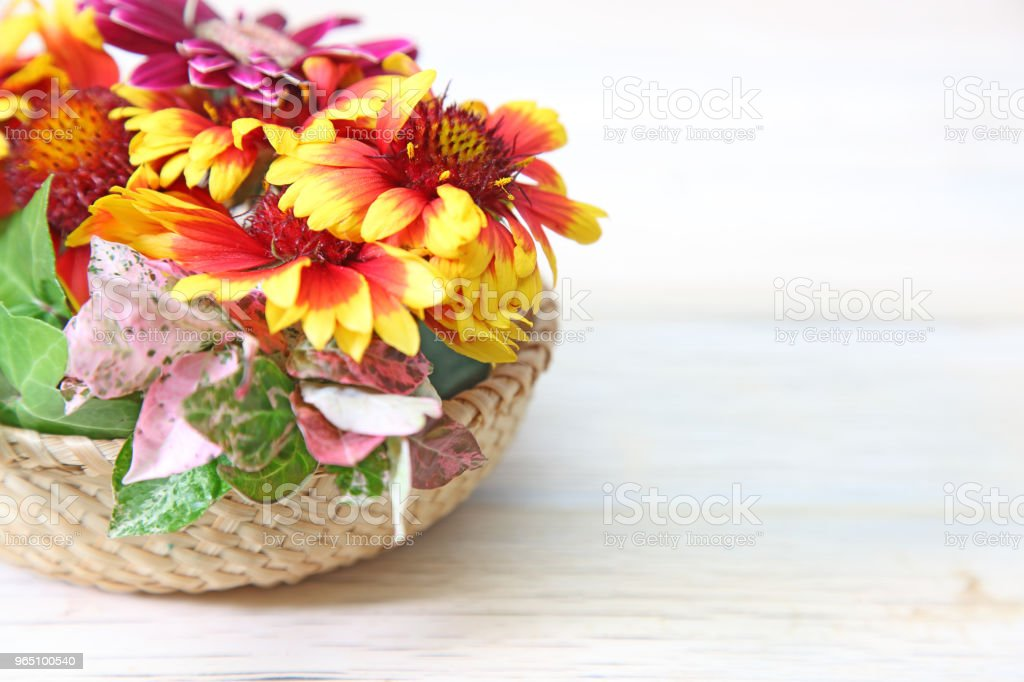 flower basket in a wooden background zbiór zdjęć royalty-free