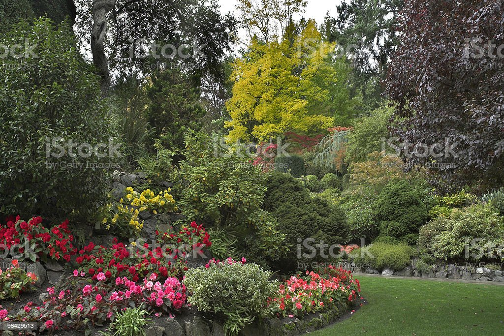 Flower bed and blossoming trees royalty-free stock photo