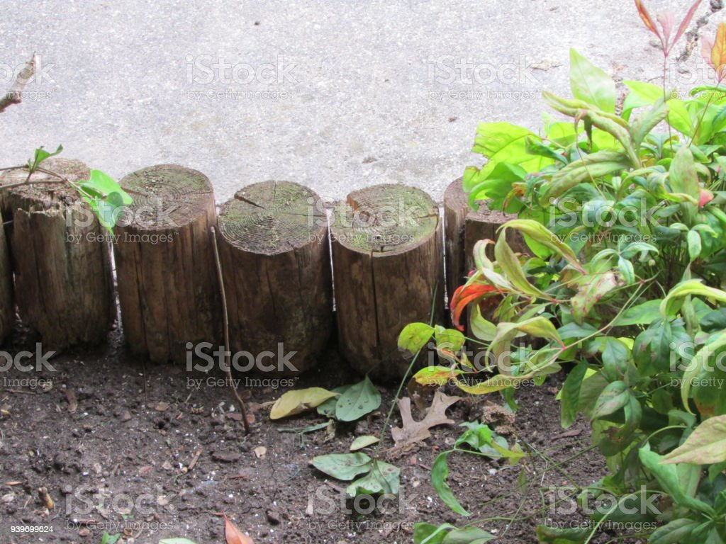 Flower Bed Border Royalty Free Stock Photo