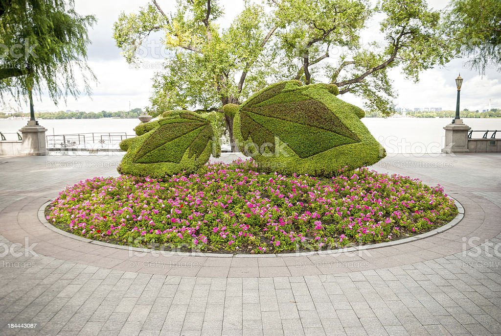 Flower bed by the Songhua River royalty-free stock photo