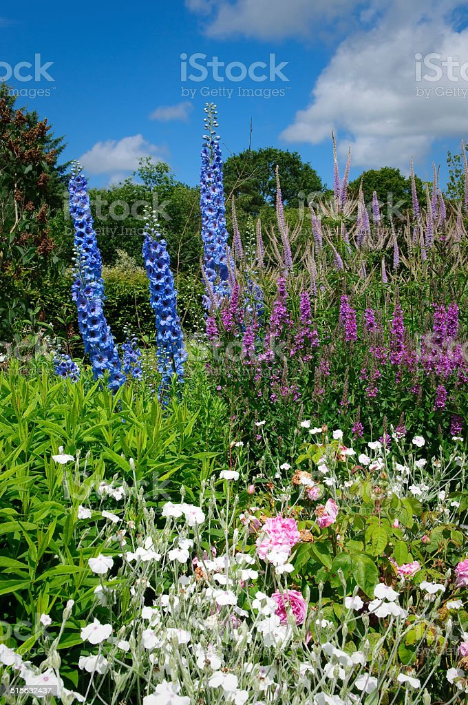 Flower bed in English cottage garden stock photo