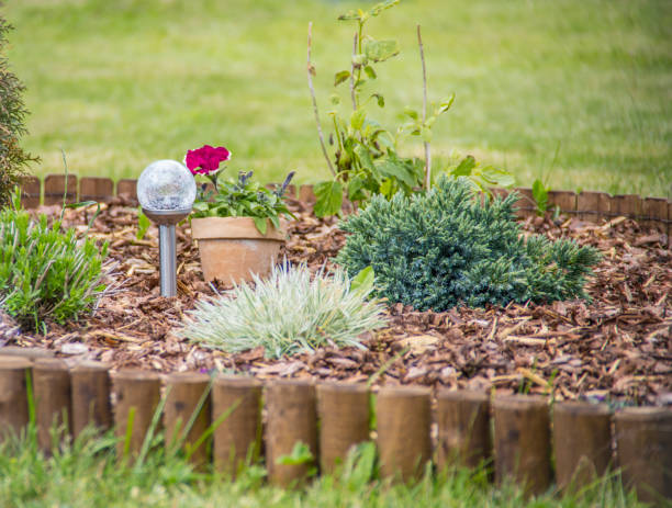 flower bed with different flowers covered with bark mulch in summer. solar lamp in the center. - palisade boundary stock photos and pictures