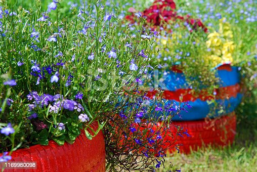 Flower beds arranged in old tires painted in bright colors. DIY garden decoration