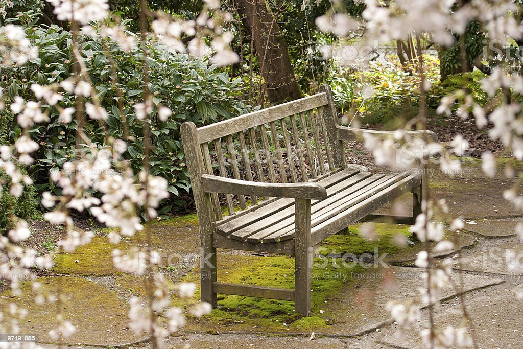 flower bench royalty-free stock photo