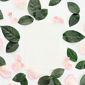 istock Flower, blank sheet of paper ,composition flatlay 635958480