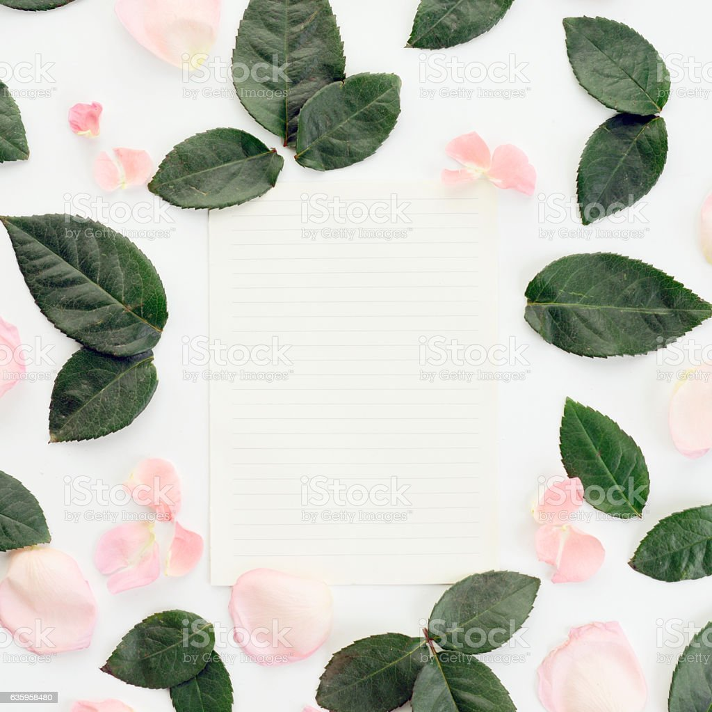 Flower, blank sheet of paper ,composition flatlay stock photo