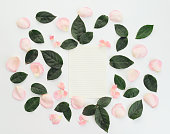 istock Flower, blank sheet of paper ,composition flatlay 635961156