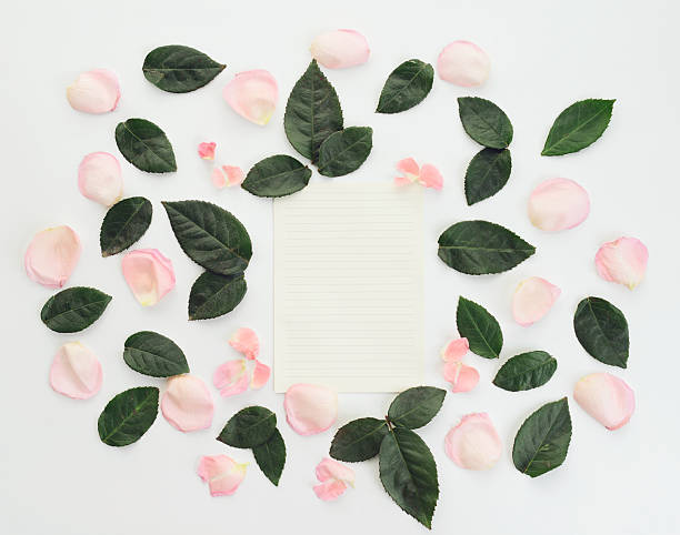 Flower blank sheet of paper composition flatlay picture id635961156?b=1&k=6&m=635961156&s=612x612&w=0&h=w djnnsvog b opht2alawoekr82eme sqsptcsomlq=
