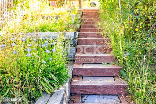 Flower blue plant decorations landscaping terraced along steep wooden steps on summer day with nobody architecture of garden backyard of house in Colorado