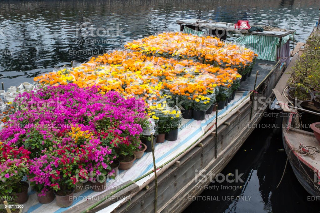 Binh Dong Floating Flower Market.Flower Boats At Flower Market On Binh Dong Wharf At Hcmc Stock Photo Download Image Now