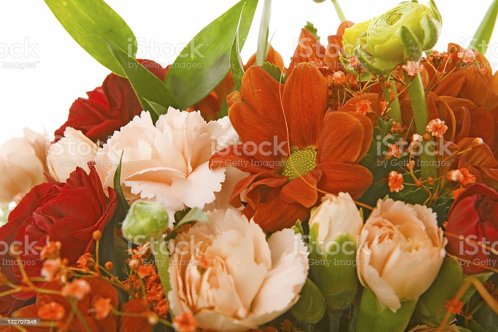 flower bouquet close-up on white background royalty-free stock photo
