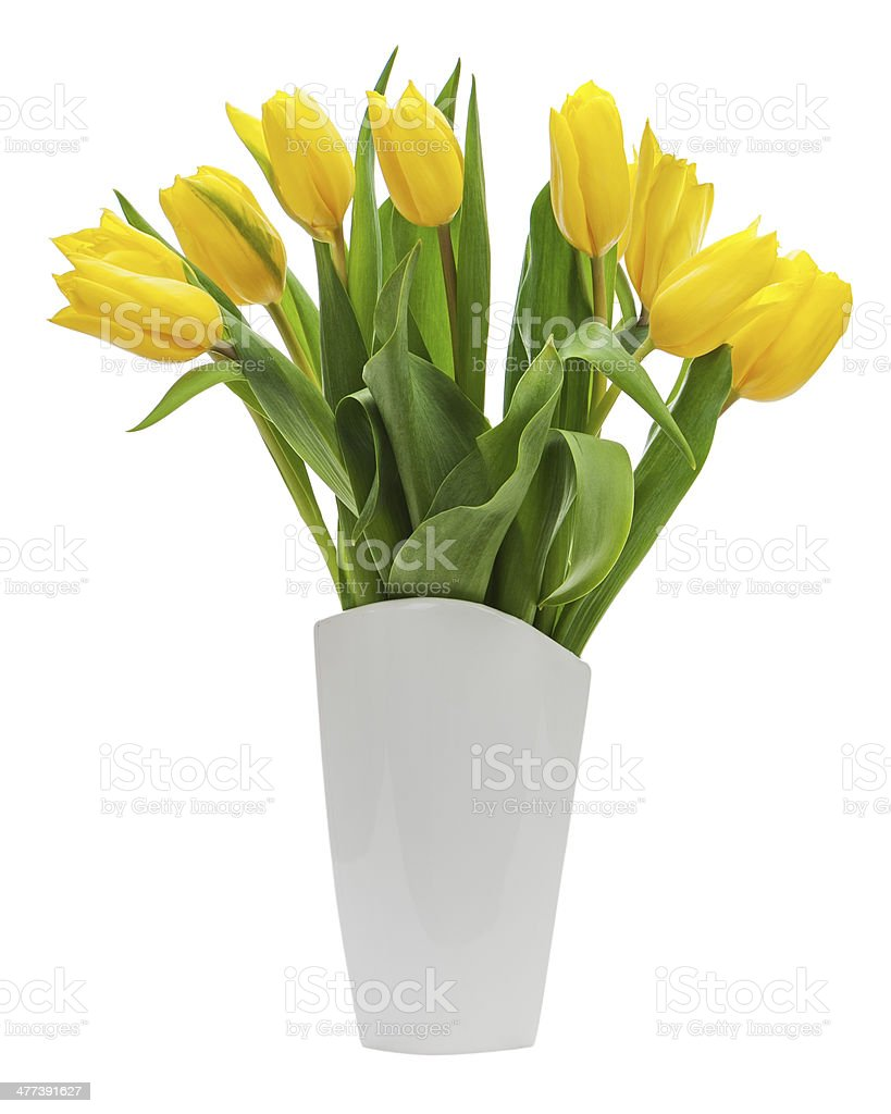 Flower bouquet from yellow tulips in vase isolated stock photo